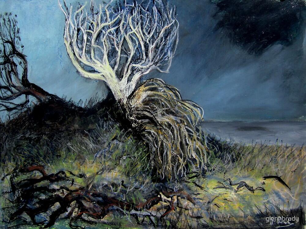 broken tree by glennbrady