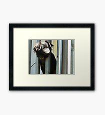 """""""Mary Jane"""" Framed Print"""