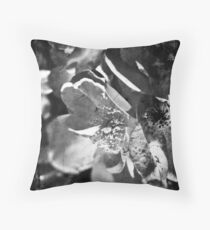 Knockout Roses No.1 Throw Pillow