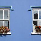 Windows in Dingle - Ireland by Arie Koene
