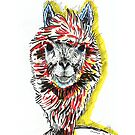 An Alpaca by wetkangaroo