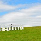 Diagonal Landscape Composition  by Orla Cahill Photography