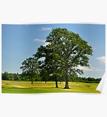 Golf Course View at Carton House, Maynooth. Poster