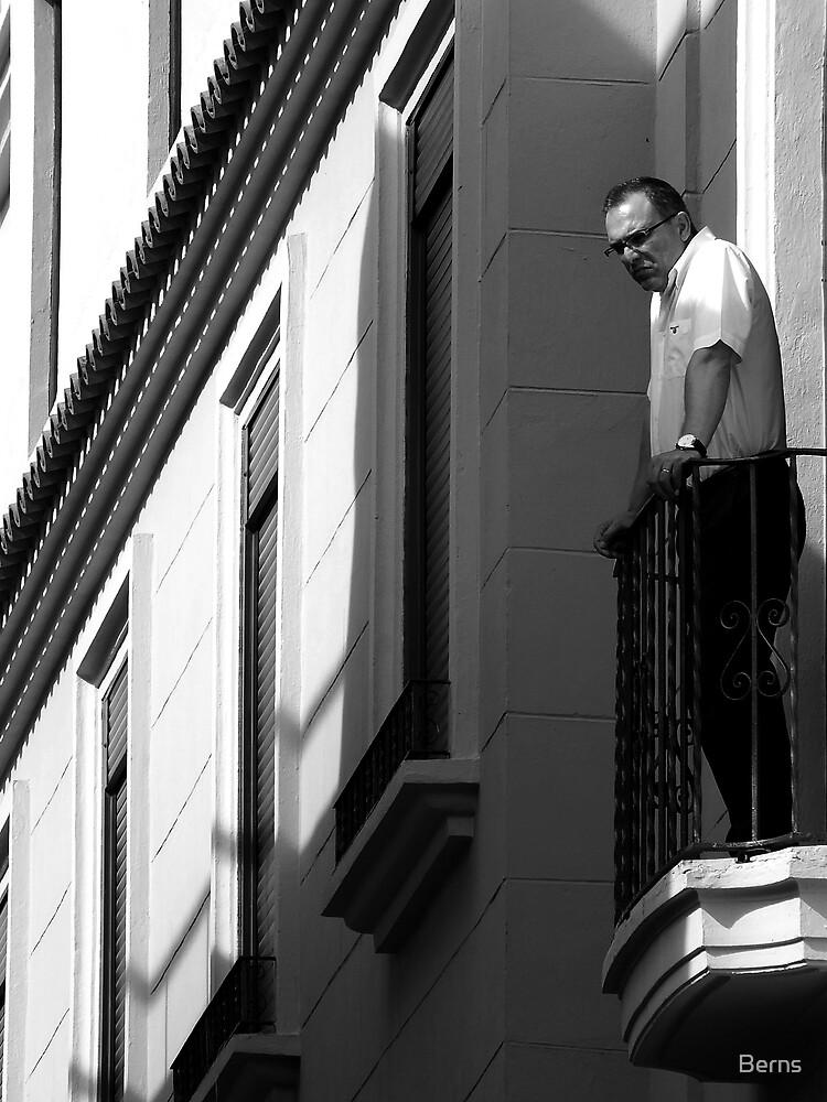 The Watcher by Berns
