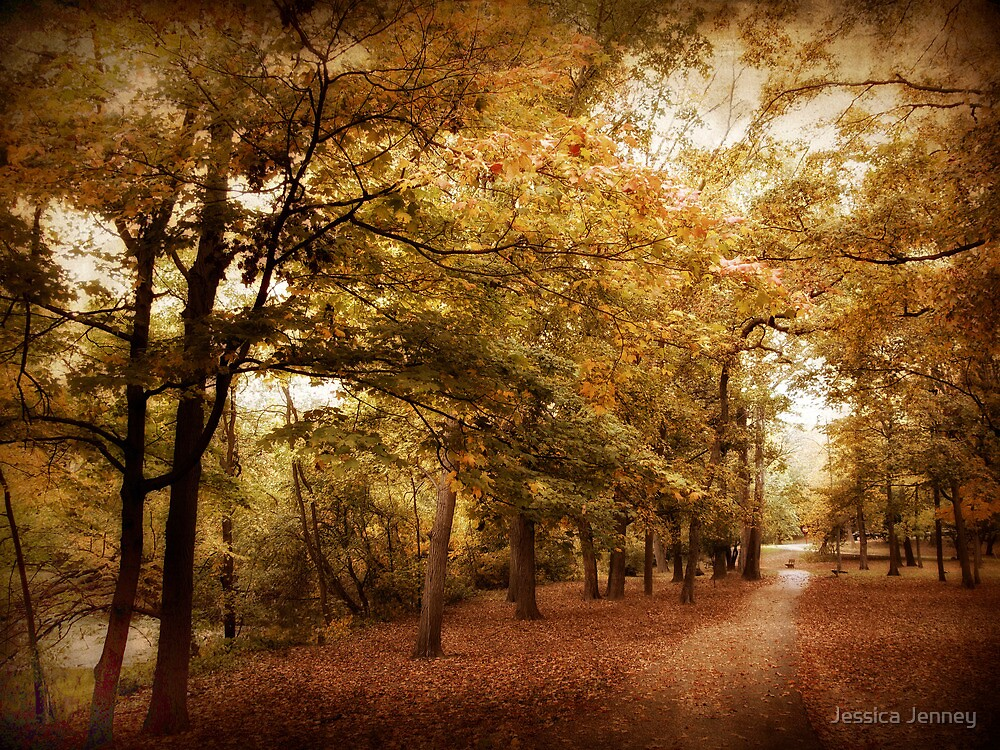 Autumn Corridor by Jessica Jenney