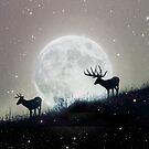 moon deer by Vin  Zzep