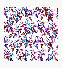 Vintage pink teal purple chic floral pattern Photographic Print