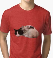 Sleeping Kittens Tri-blend T-Shirt