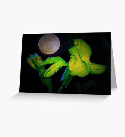 Iris by moonlight Greeting Card