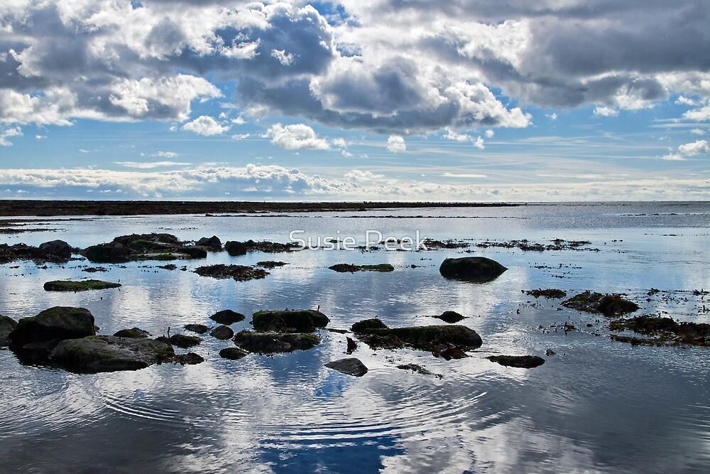 Low Tide At Lyme Regis 2 by Susie Peek