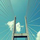 Bridge to Brunswick by ubikdesigns
