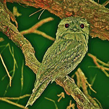 Tawny frog mouth  princess by hartlandangel