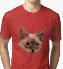 Siemese Kitten  Tri-blend T-Shirt
