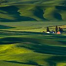 Beautiful Rolling Farmland by printscapes