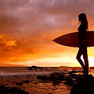 Silhouette Of Surfer Girl by printscapes