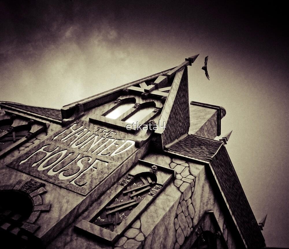 Haunted house by Eti Reid