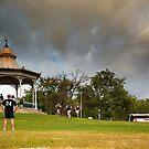 Elder Park Rotunda, Adelaide by Stuart Robertson Reynolds