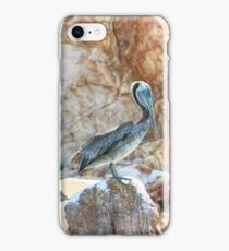 Lonely wild brown pelican HDR iPhone Case/Skin