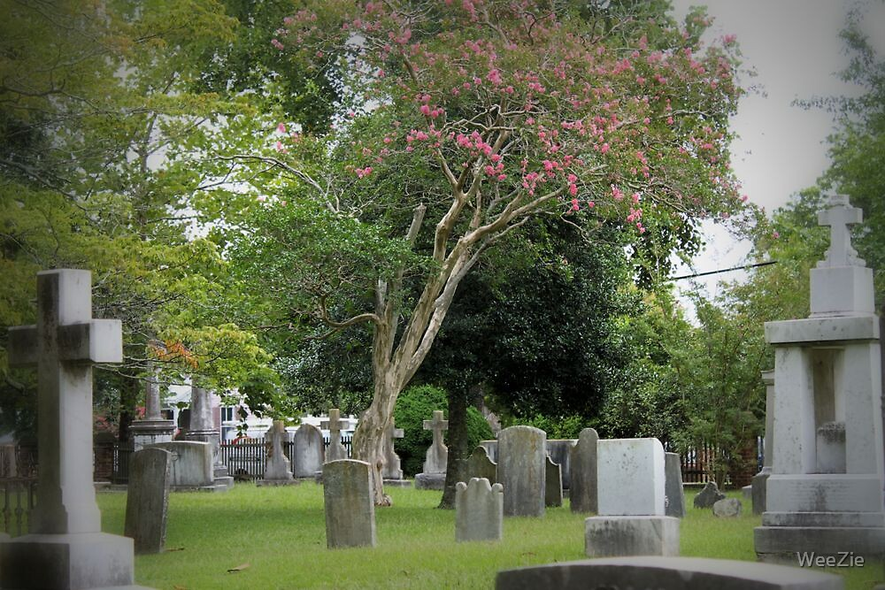 Grave Yard by WeeZie