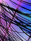 Web by shalisa