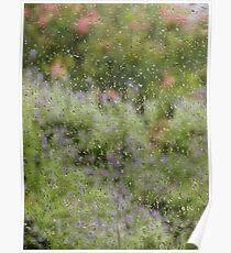 Garden flowers through rain spattered flyscreen Poster