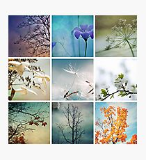 Once upon a season Photographic Print