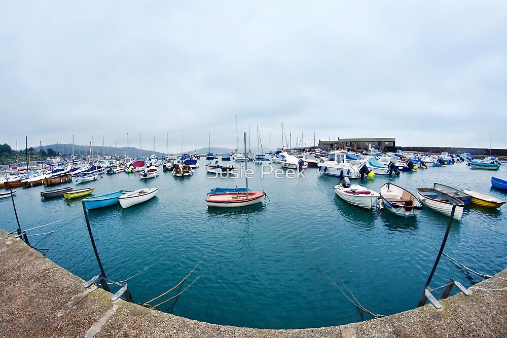 A Fisheye View Of Lyme Regis Harbour by Susie Peek