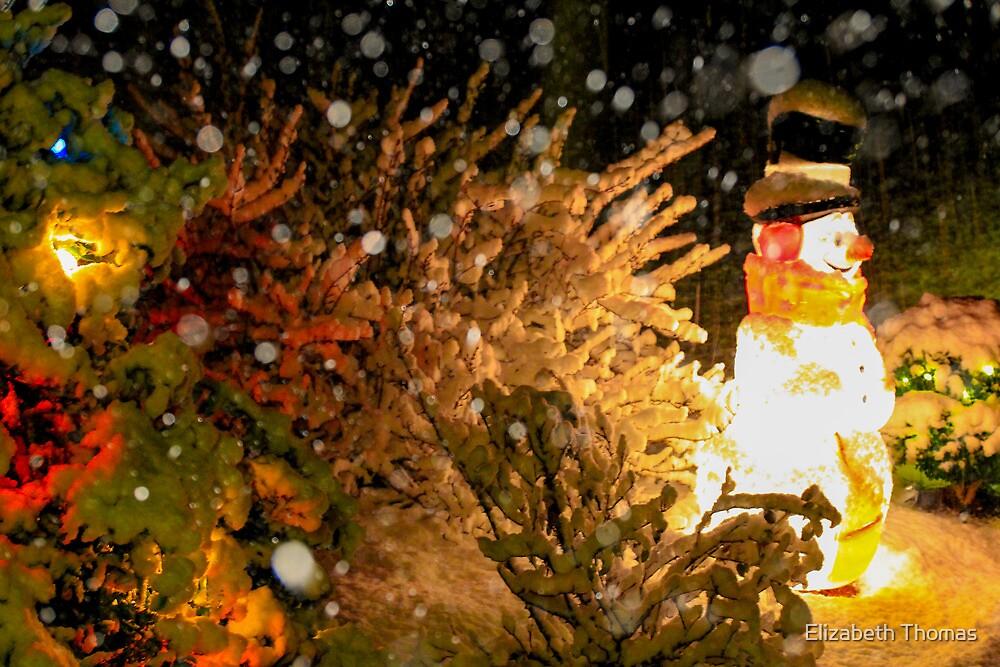 Frosty in a Snowstorm by Elizabeth Thomas