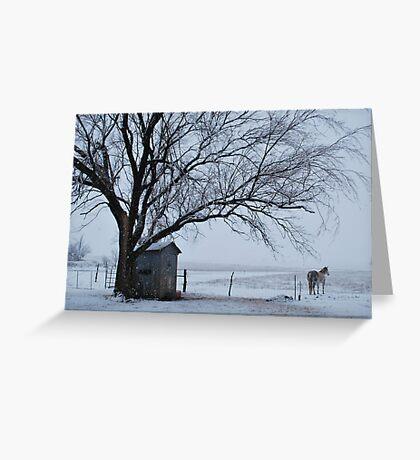 Horse in Snowy Prairie Landscape Greeting Card