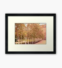 Colors of Automn !! Framed Print