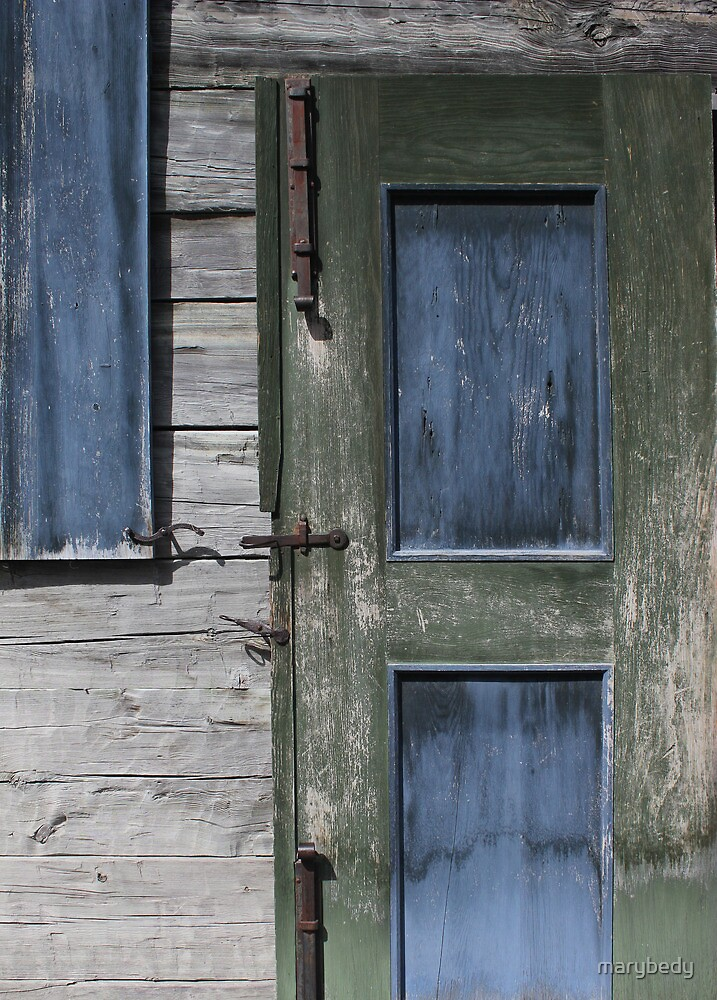 Green Door Blue Shutter by marybedy