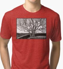 Solitary, Ink Tree Drawing Tri-blend T-Shirt