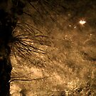 Stormy weather - Fall in Bergen by Algot Kristoffer Peterson