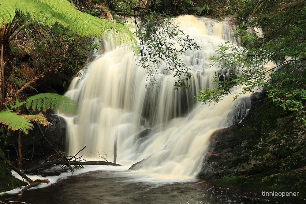 Red Water Creek Falls by tinnieopener
