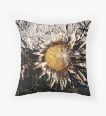 Dry Sunflower Throw Pillow