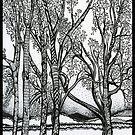 Farm Trees, Ink Drawing by Danielle Scott