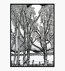 Farm Trees, Ink Drawing Photographic Print