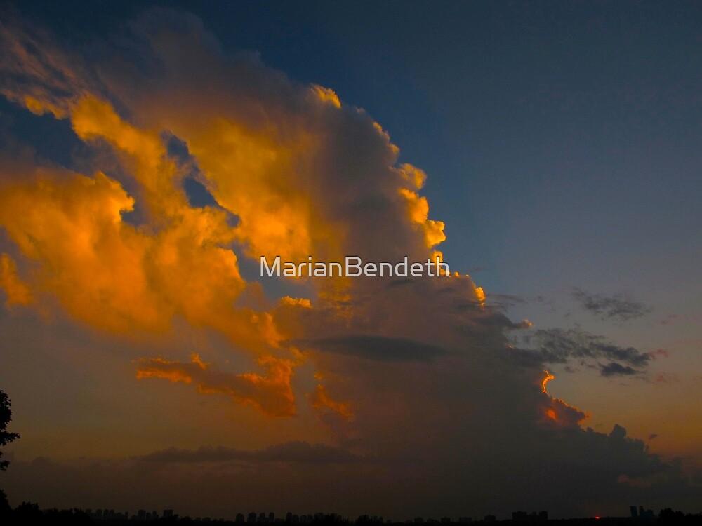 Cloud plummage by MarianBendeth