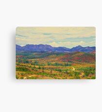 The Flinders Ranges in Bloom Canvas Print