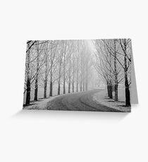 Barren Trees in Winter Greeting Card