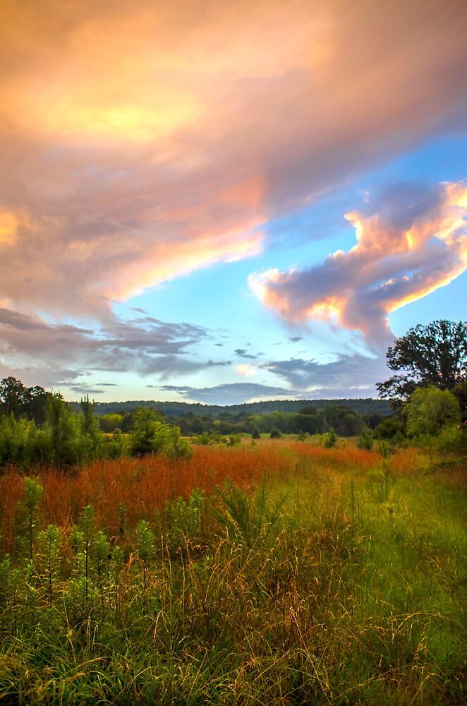 Alabama Sunset by ctellis156