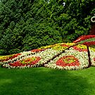 Flower sculpture - the peacock at Mainau, Germany by bubblehex08