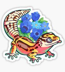 Bold gecko Sticker