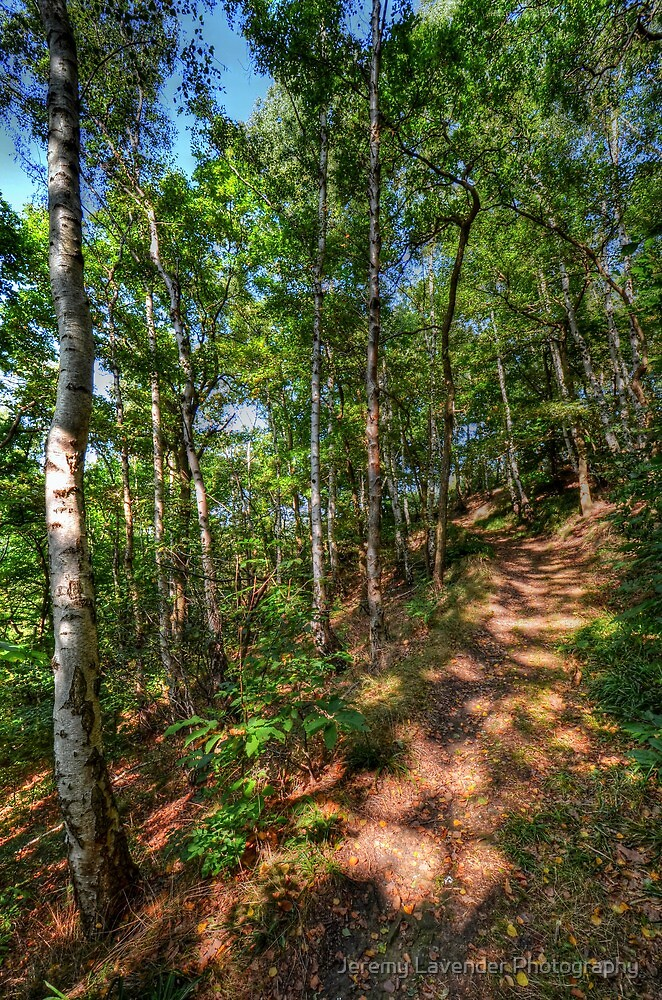 Nature trail in Trooz, Belgium by Jeremy Lavender Photography