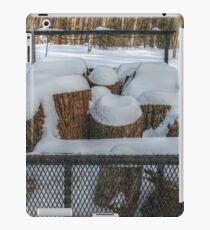 Snowy Stumps iPad Case/Skin