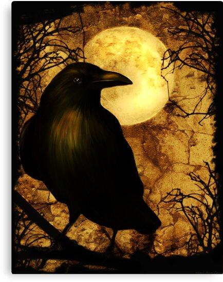 The Raven by Kerri Ann Crau