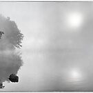 Two Suns B&W by martinilogic
