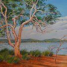Windy Day on the Swan River by Gregory Pastoll