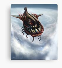 "Fly 1: The ""eye"" of the storm Canvas Print"