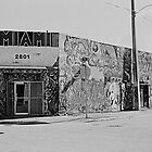 Painted Miami by Bill Wetmore